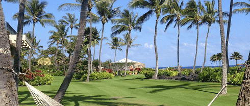 Best Things to Do in Kauai with Children
