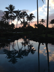 Best Things to Do in Kauai with Children. Check out my top 13 things to do with many of them being cheap or free.