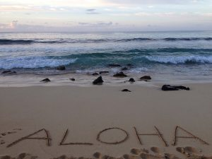 Planning a large family vacation can be a bit of an overwhelming task. Last April, my parents celebrated their 40th Wedding Anniversary with a vow renewal ceremony on Shipwreck Beach, Kauai. Our entire family of 13 joined them for a week and we had an amazing family vacation. Here are our best tips for planning a large family vacation stress-free.