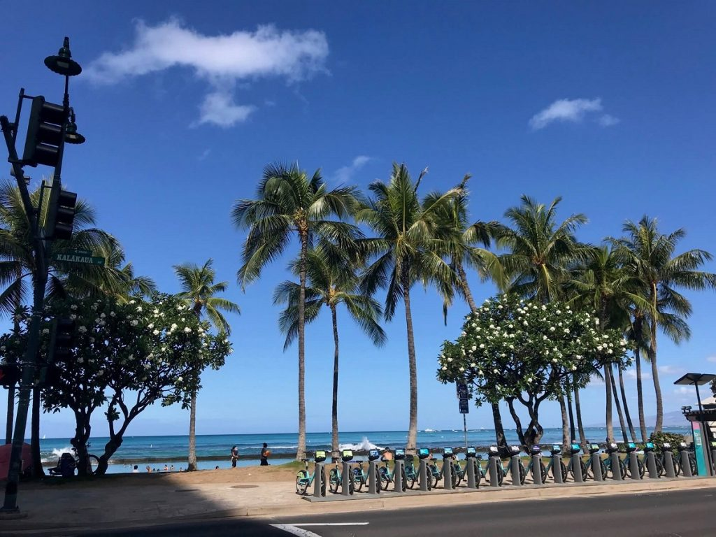 Waikiki Beach: Oahu Itinerary Ideas