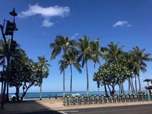Waikiki Beach: Oahu Itinerary Ideas