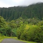 Ho'omaluhia Botanical Gardens - Kid-Friendly Hiking Trail with gorgeous green mountains
