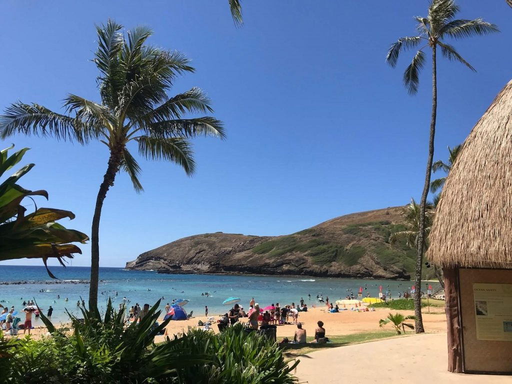 Hanauma Bay with palm trees and beach hut for gear rentals