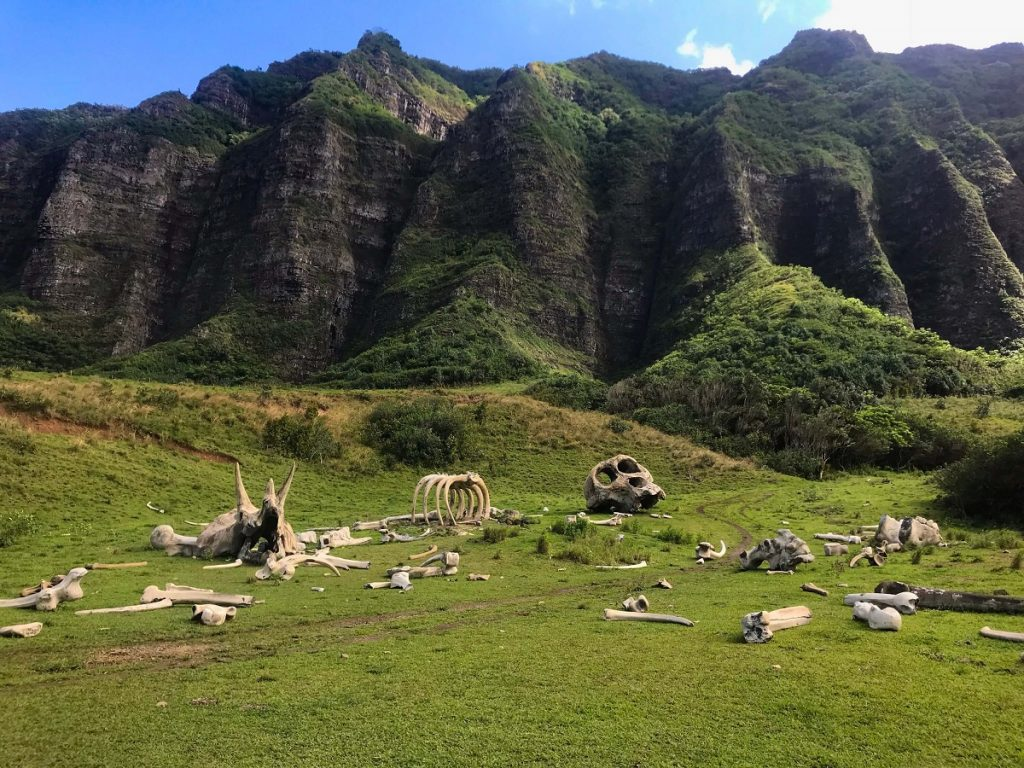 Jurassic Valley Hawaii