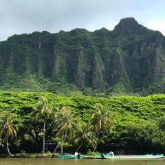 Jurassic Park Hawaii | How to Visit Kualoa Ranch