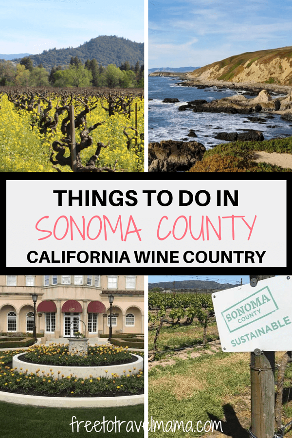 Sonoma County, in the heart of California's Wine Country, offers beautiful things to do, like fresh cuisine, tasting at as many wineries as you please, redwoods, the coast, and plenty of hikes. Check out a local's favorite's spots! #freetotravelmama #sonomacounty #sonoma #california