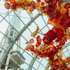 How to Visit Chihuly Garden and Glass in Seattle