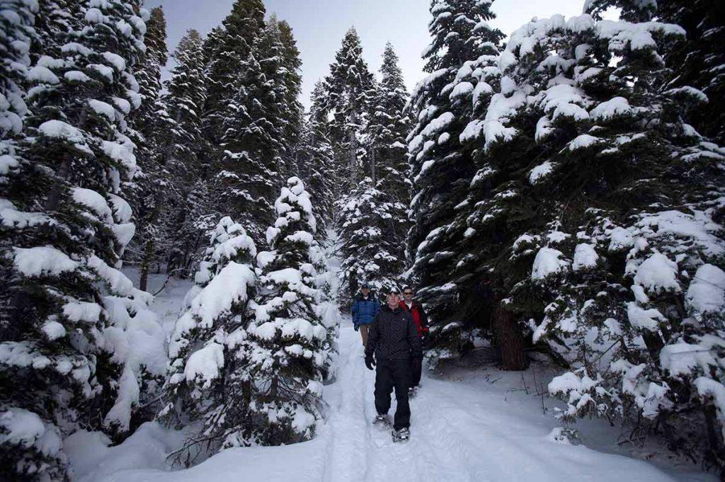 Christmas in California   Snowy Lake Tahoe