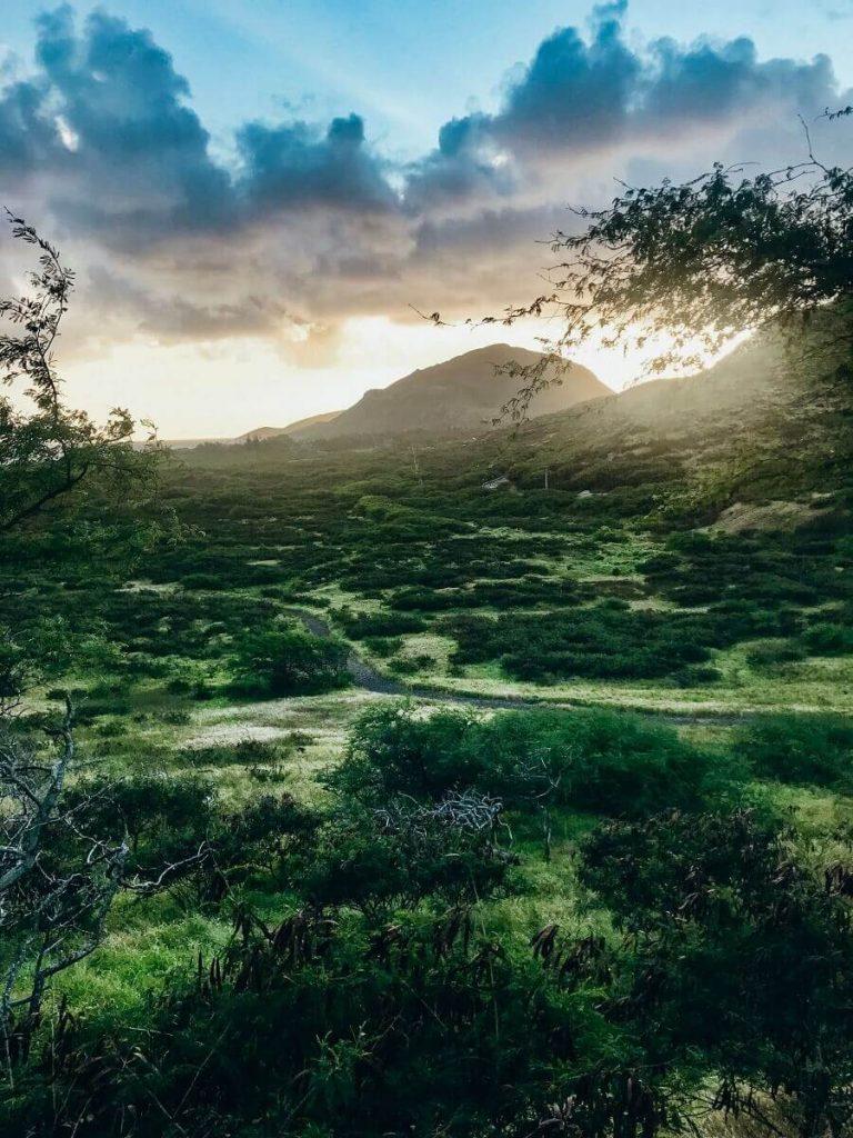 Makapu'u Lighthouse Trail, sunset view  #freetotravelmama | Oahu Hawaii Photography | Oahu Instagram Pictures |  Oahu Instagram Spots | Instagram Worthy Pictures in Oahu | Hawaii Instagram Pictures Oahu | Best Places for photos Oahu | Best Photo Spots Oahu