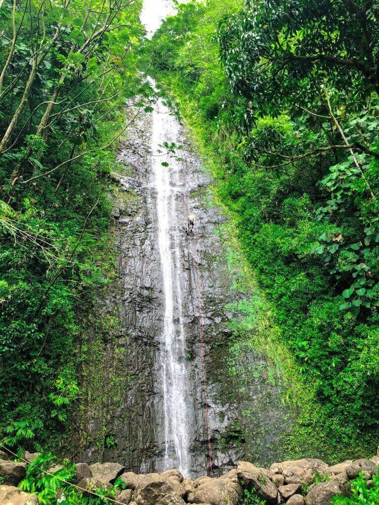 Manoa Falls on Oahu  #freetotravelmama | Oahu Hawaii Photography | Oahu Instagram Pictures |  Oahu Instagram Spots | Instagram Worthy Pictures in Oahu | Hawaii Instagram Pictures Oahu | Best Places for photos Oahu | Best Photo Spots Oahu