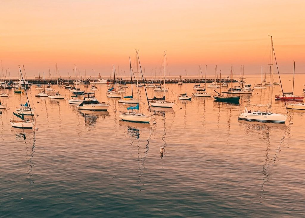 Monterey is just one stop on California's Highway 1,  San Francisco to San Diego  road trip. With kids or without, this itinerary deserves to be on all bucket lists. From Northern California to Southern California, we've got you covered with budget and luxury recommendations. #freetotravelmama #sanfrancisco #california #californiaroadtrip