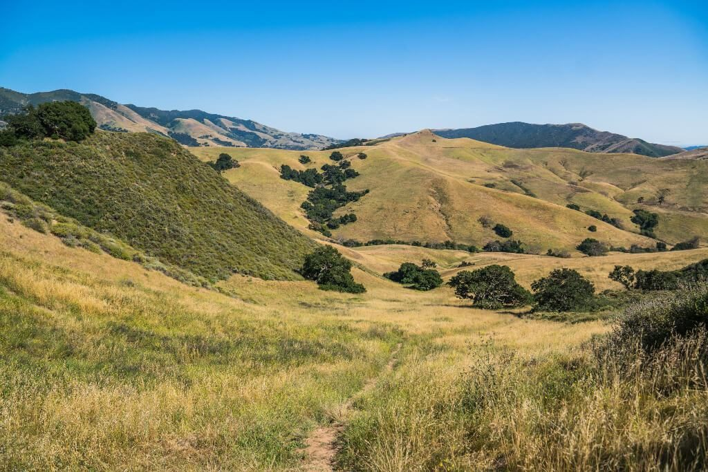 San Luis Obispo is just one stop on California's Highway 1,  San Francisco to San Diego  road trip. With kids or without, this itinerary deserves to be on all bucket lists. From Northern California to Southern California, we've got you covered with budget and luxury recommendations. #freetotravelmama #sanfrancisco #california #californiaroadtrip